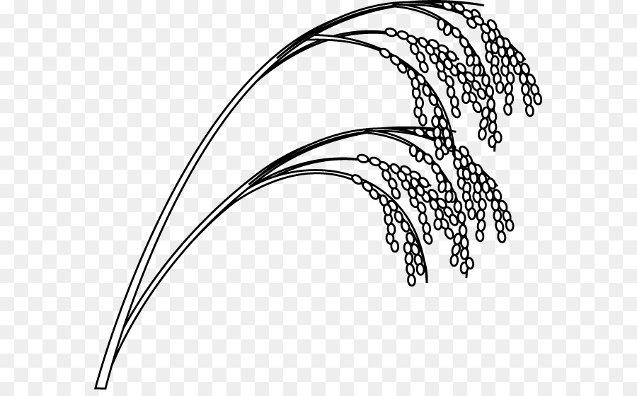 White rice drawing clip. Cereal clipart outline