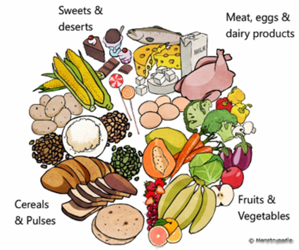 Cereal clipart pulse. Balanced diet free images