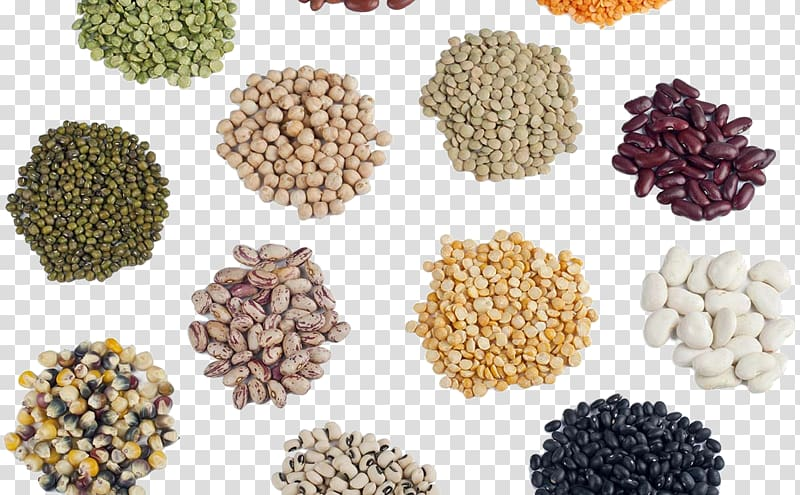 Seed saving agriculture library. Cereal clipart pulse