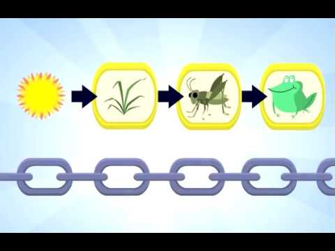 Food cartoon video youtube. Chain clipart animated