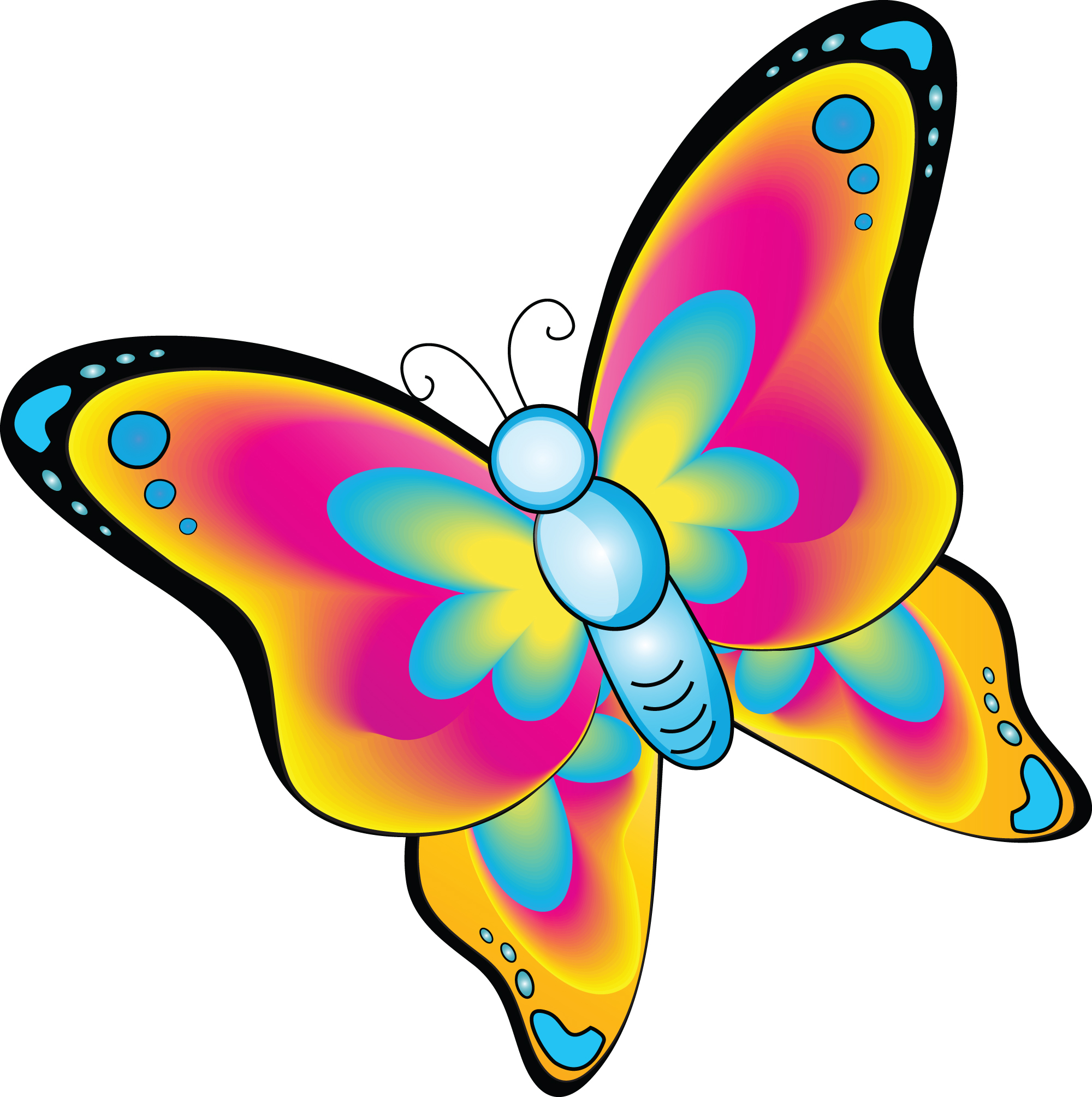 Cartoon clipart butterfly. Clip art library cliparts