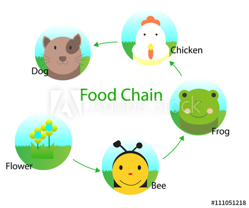 Food for kids buy. Chain clipart child