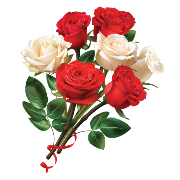 Free download red chain. Roses vector png