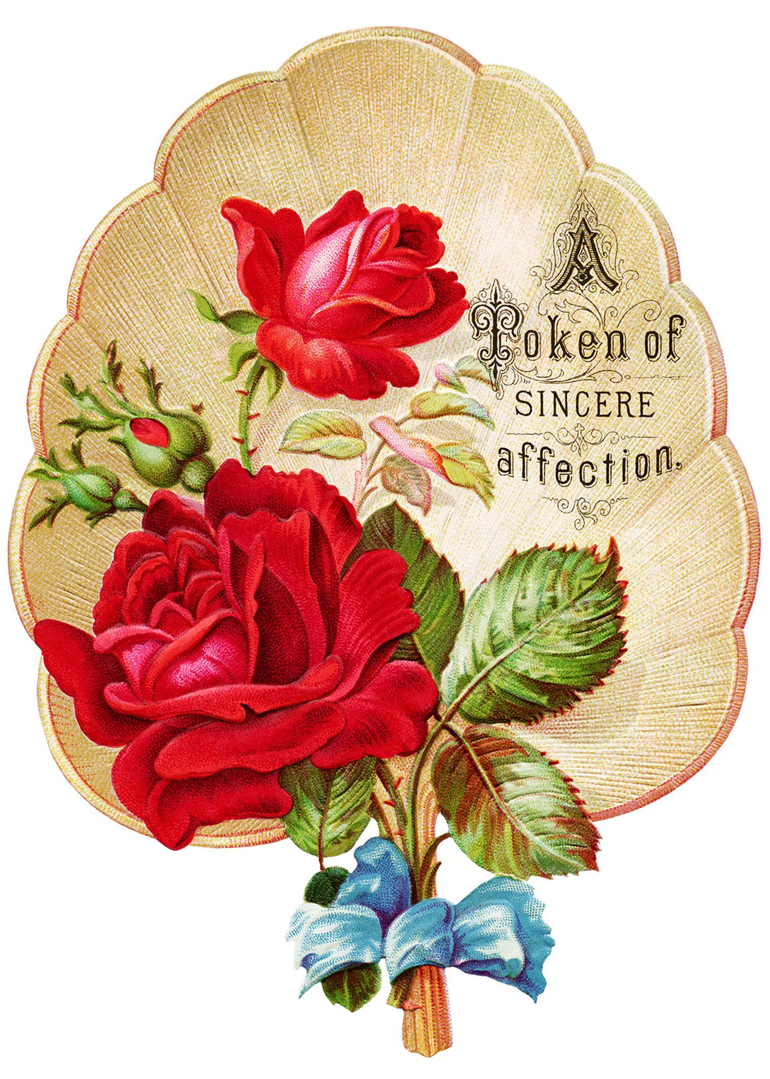 Free victorian roses art. Chain clipart rose