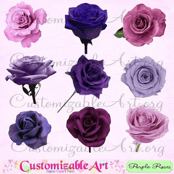 Purple clip art digital. Chain clipart rose