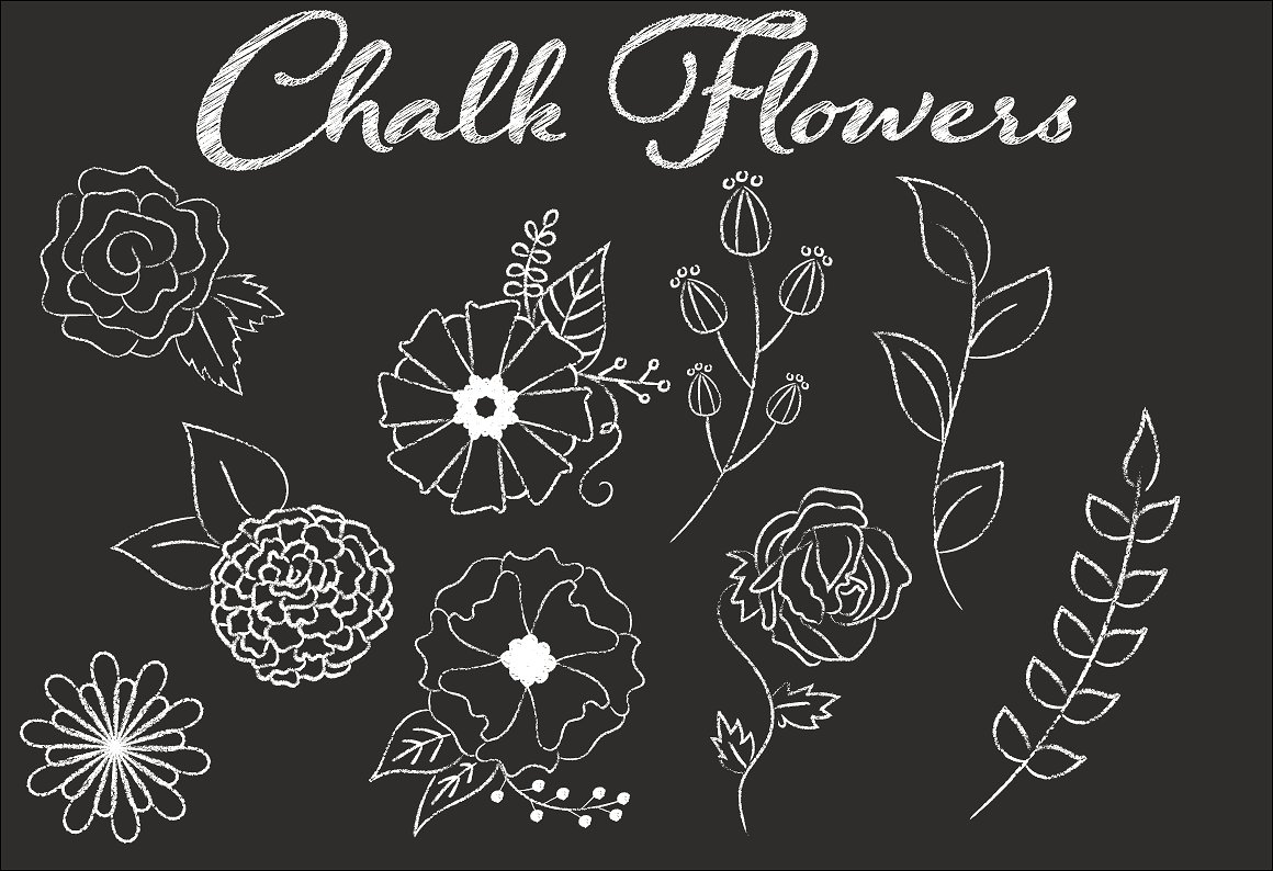 White Flowers And Blackboard Background, Blackboard, Flower, Background  Background Image for Free Download