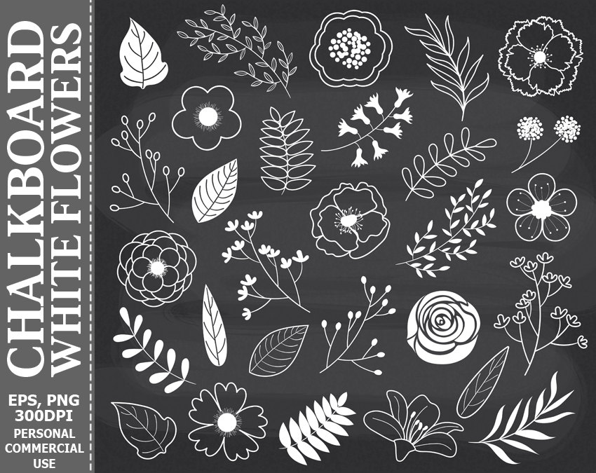 Chalk clipart flower, Chalk flower Transparent FREE for