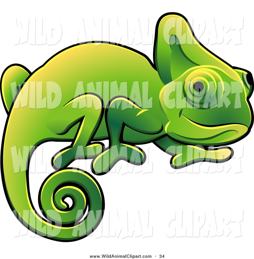 Chameleon clipart adorable. Cameleon wild life pencil
