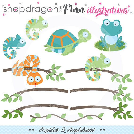 Reptiles amphibian frog turtle. Chameleon clipart baby