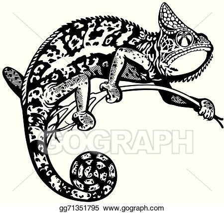 Vector illustration eps . Chameleon clipart black and white
