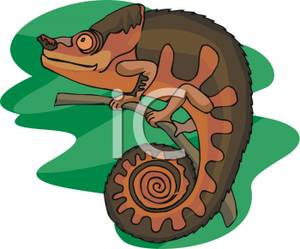 Royalty free image a. Chameleon clipart brown