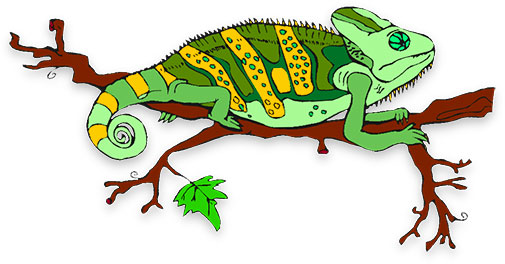 Lizard free collection download. Chameleon clipart cartoon
