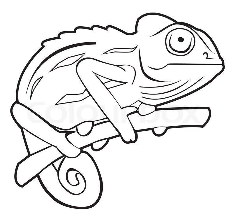 Http moziru com images. Chameleon clipart chameleon outline