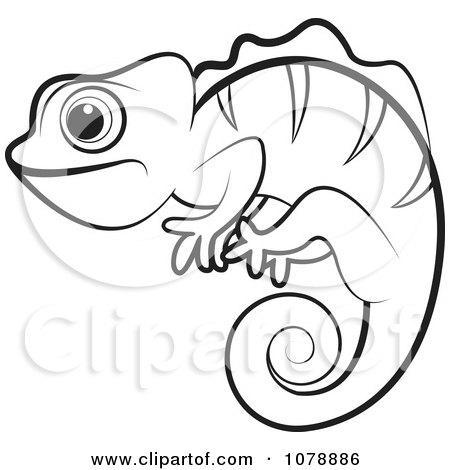 Chameleon clipart chameleon outline. Drawing at getdrawings com