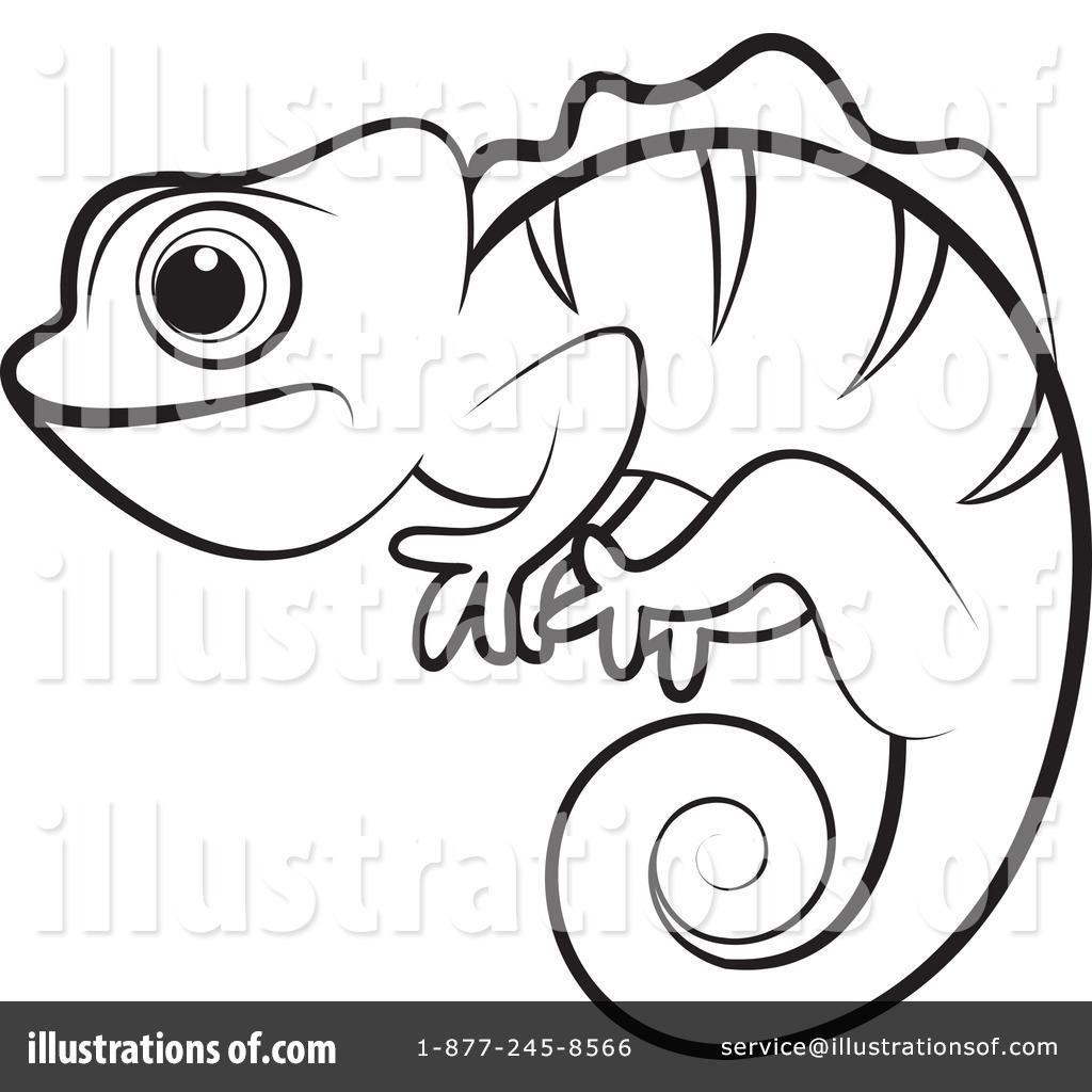 Drawing at getdrawings com. Chameleon clipart chameleon outline