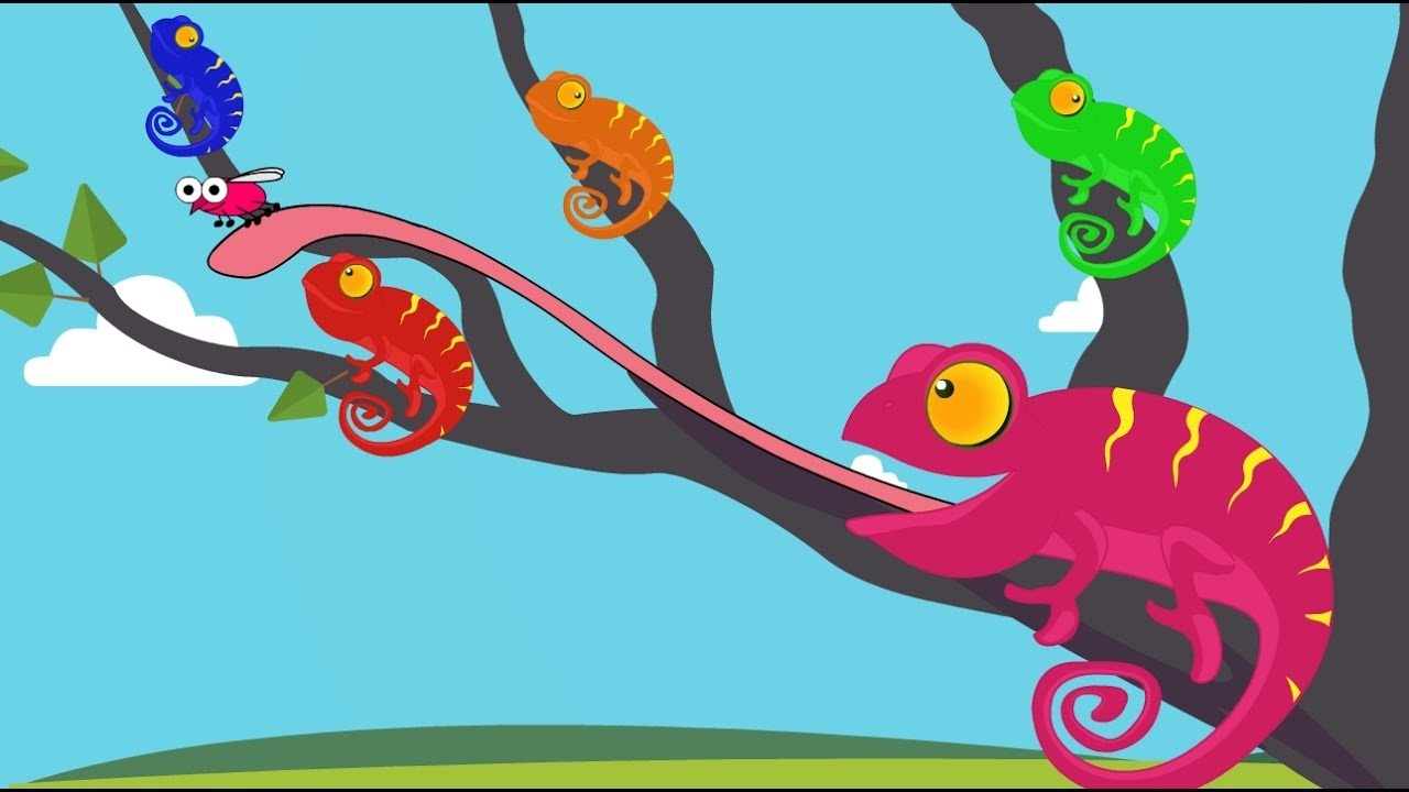 Chameleon clipart colorful. Learn the colors with