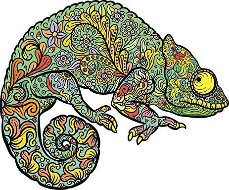 Chameleon clipart colorful. Amazon com paisley mandala