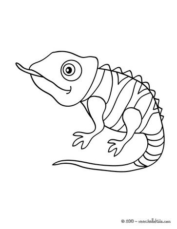 Cute to paint on. Chameleon clipart easy draw