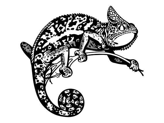 Chameleon clipart gecko. Reptile iguana lizard animal