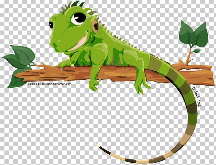 Lizard green png amphibian. Chameleon clipart iguana