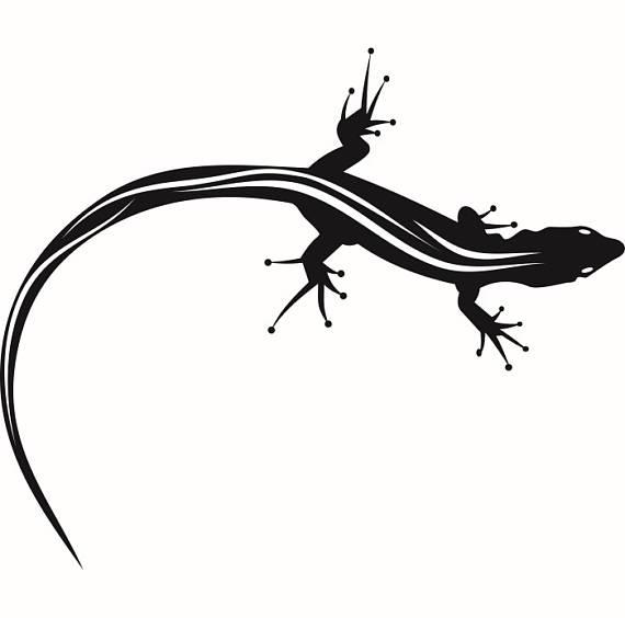 Lizard reptile gecko komodo. Chameleon clipart iguana