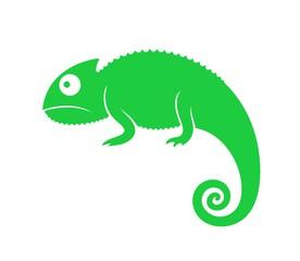 Chameleon clipart iguana. Photos royalty free images