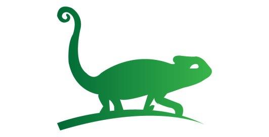 Chameleon clipart iguana. Top species chameleons to