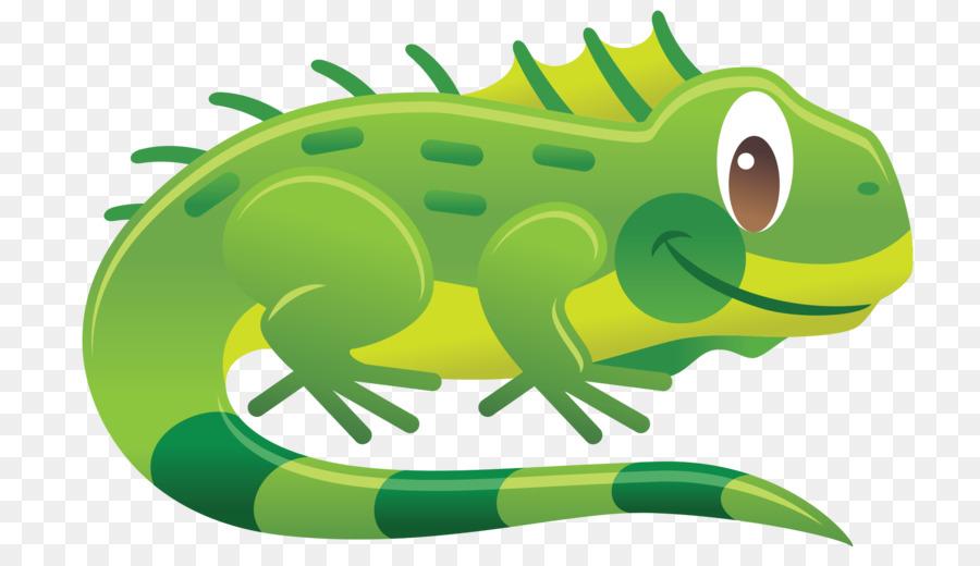 Iguana clipart. Chameleons reptile green lizard