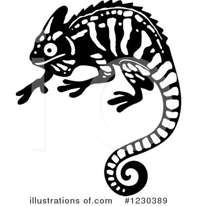 By vector tradition sm. Chameleon clipart illustration
