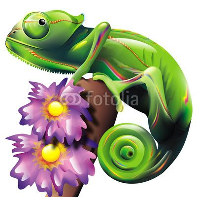 Chameleon clipart purple.  best dragons and