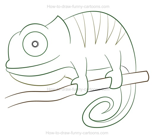 Chameleon simple