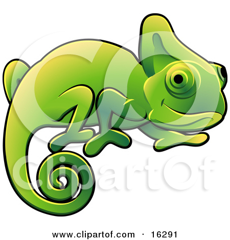 Illustration panda free images. Chameleon clipart tail