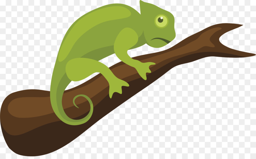Colorful background lizard illustration. Chameleon clipart tail