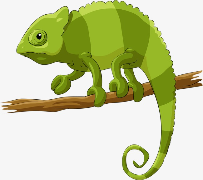 Chameleon clipart tail. Creative cartoon hand painted