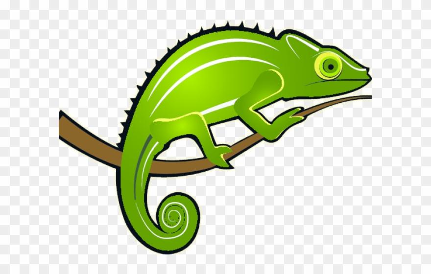 Monitor lizard colour png. Chameleon clipart transparent background