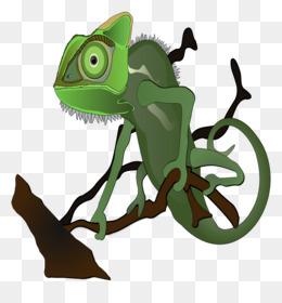 Chameleon clipart veiled chameleon. Free download chameleons lizard