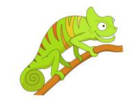 Chameleon clipart. Reptiles clip art pictures