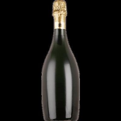 Large transparent stickpng . Champagne bottle png