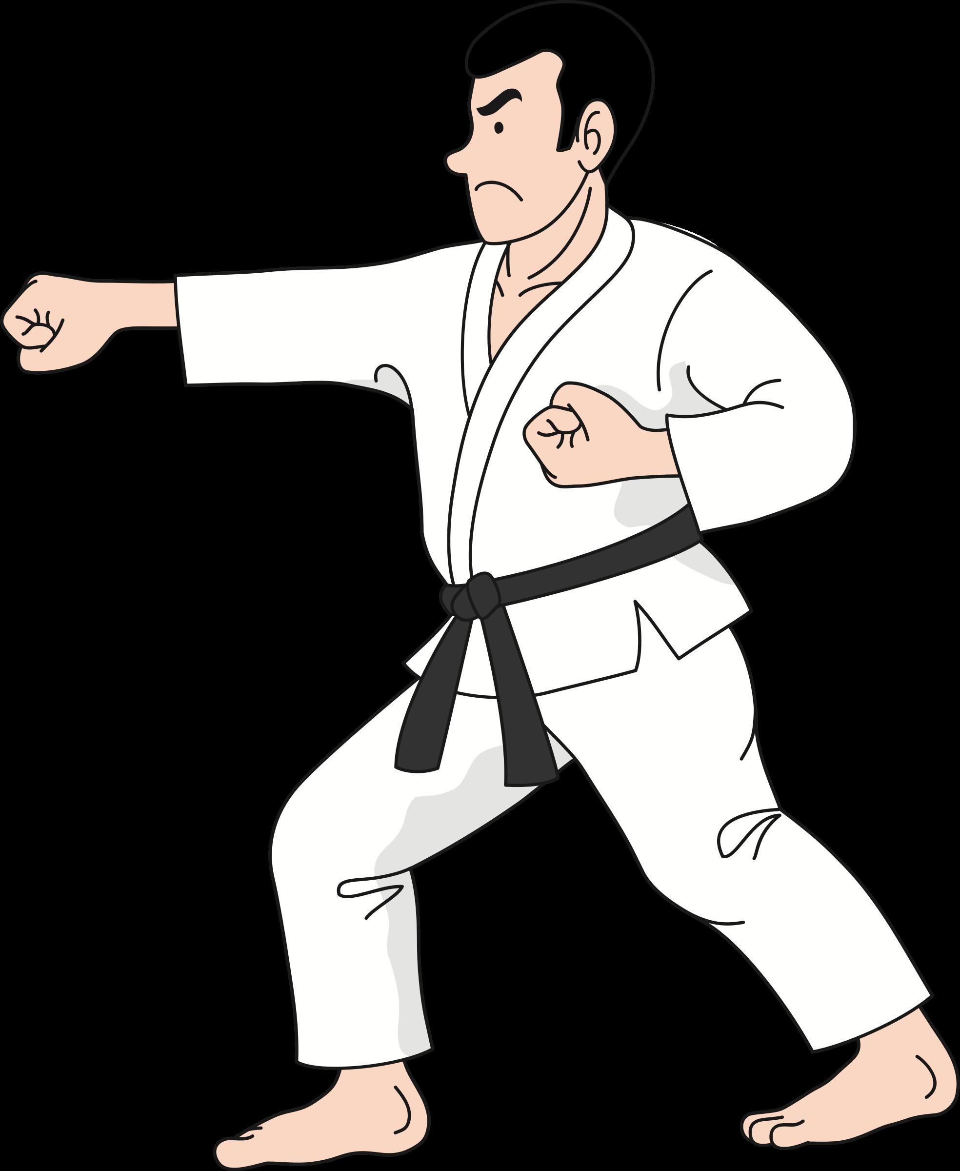 Karate big image png. Computer clipart practice
