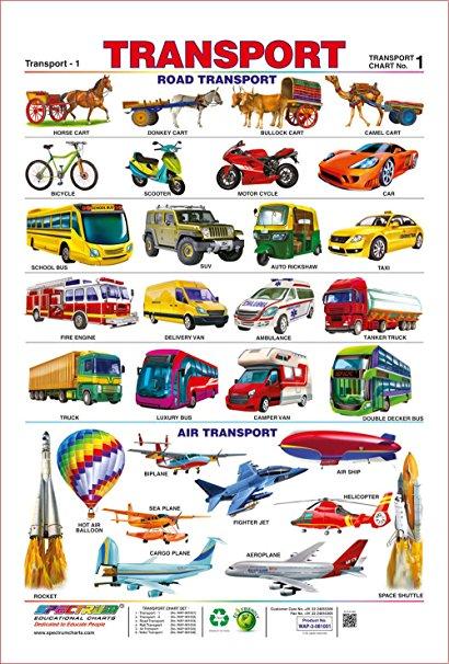 Chart clipart transportation. Amazon com spectrum pre