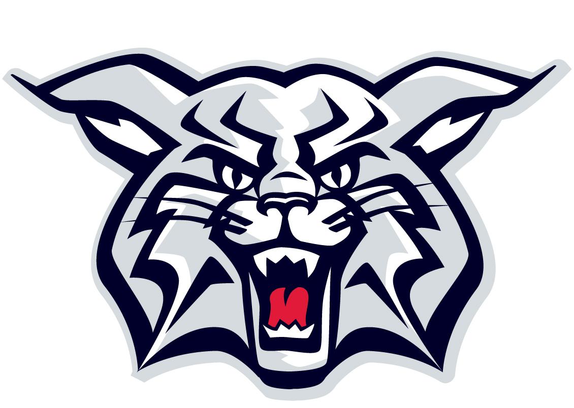 Clip art logo car. Wildcat clipart welch