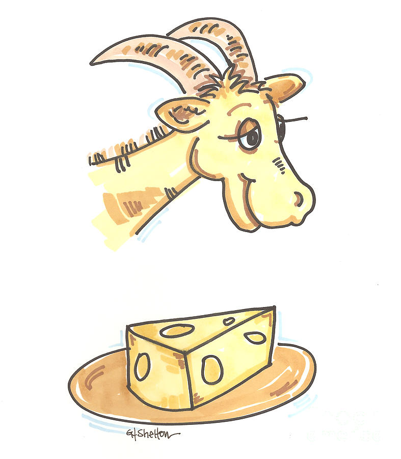 Cheese clipart drawing. Goat by gail shelton