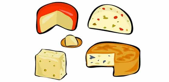 Can rats eat ratcentral. Cheese clipart feta cheese