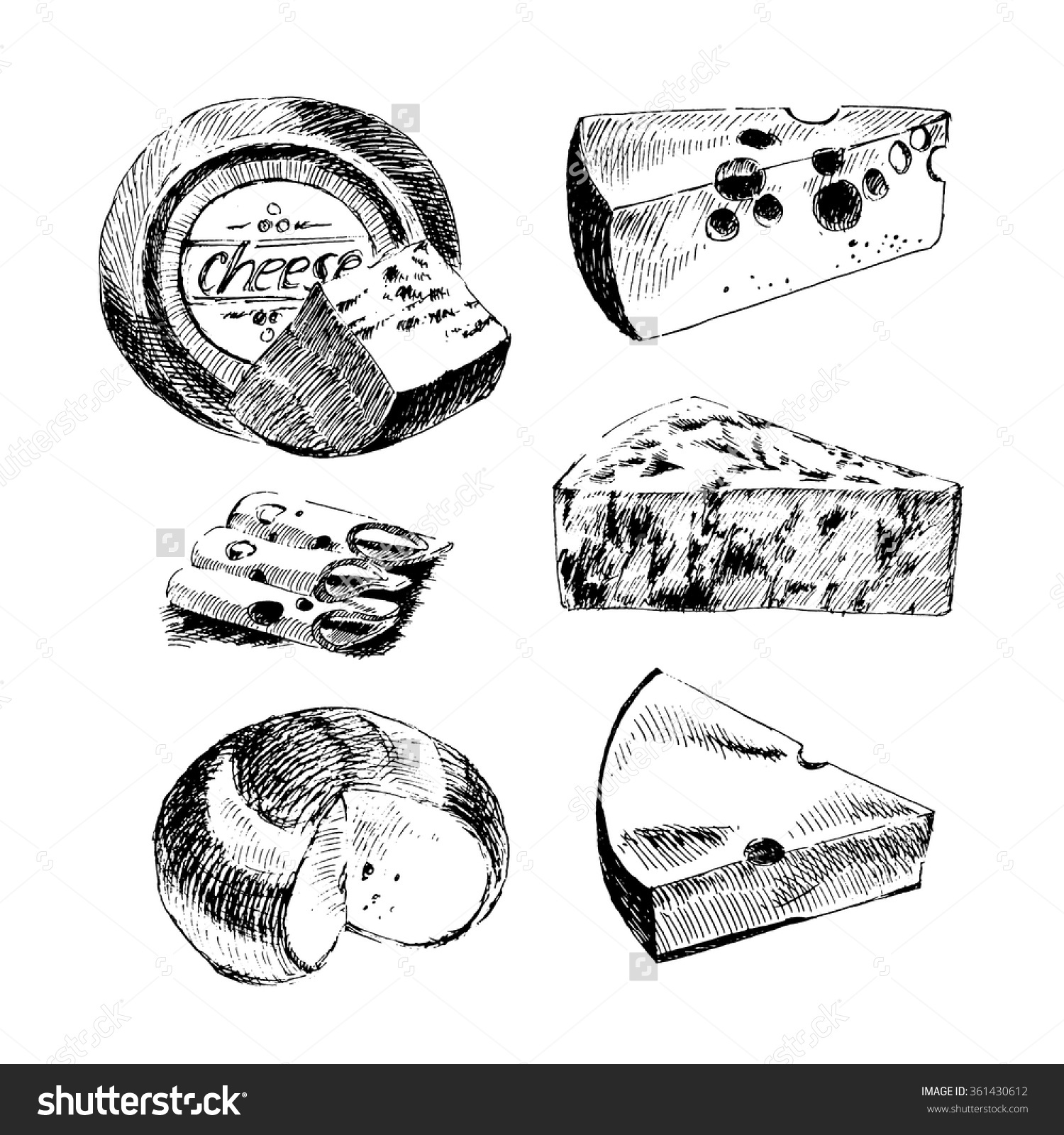 Cheese clipart parmesan. Edammer clipground vector hand