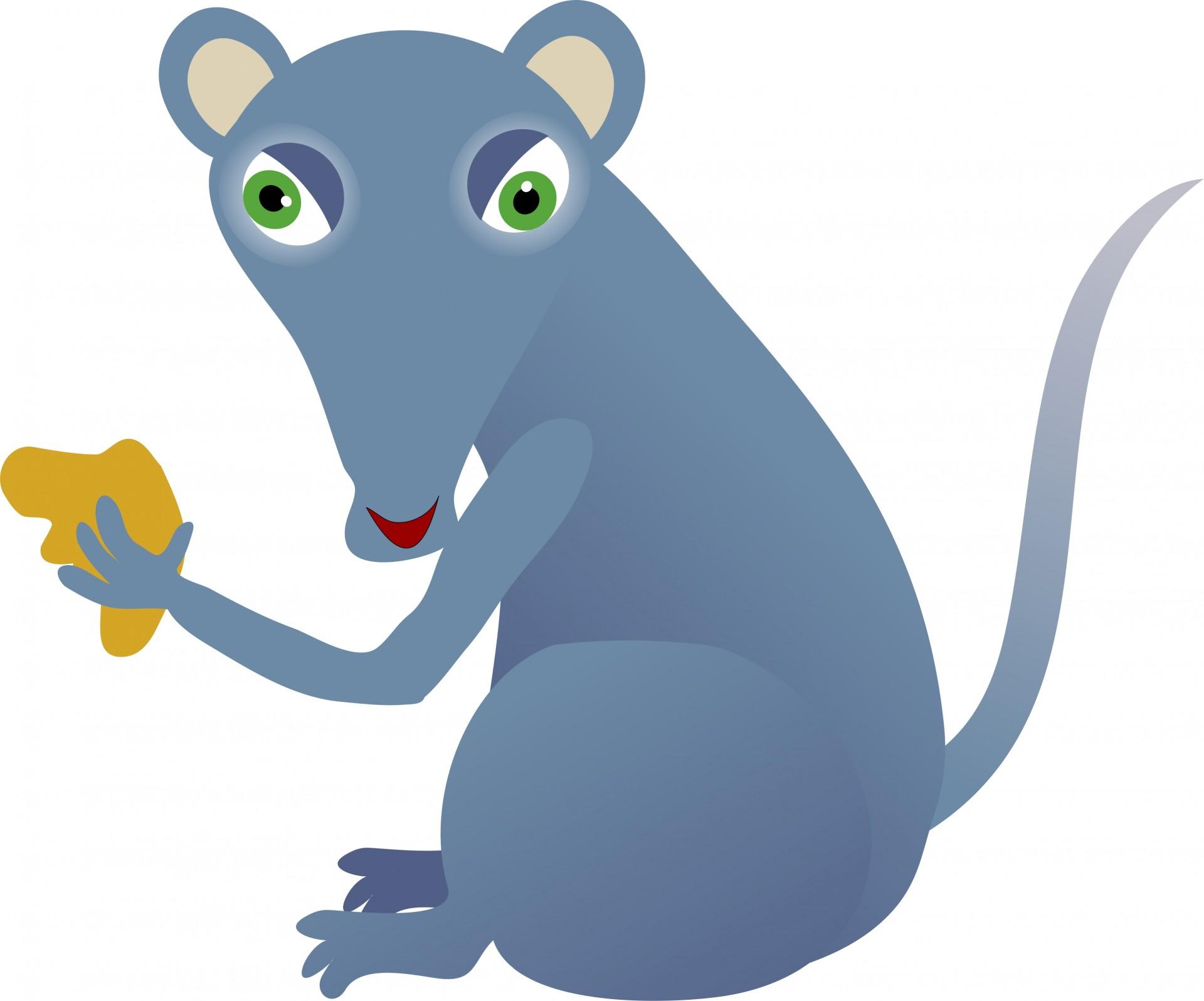 Cheesy mouse free stock. Rat clipart public domain