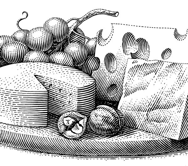 best scratchboard illustration. Cheese clipart vintage