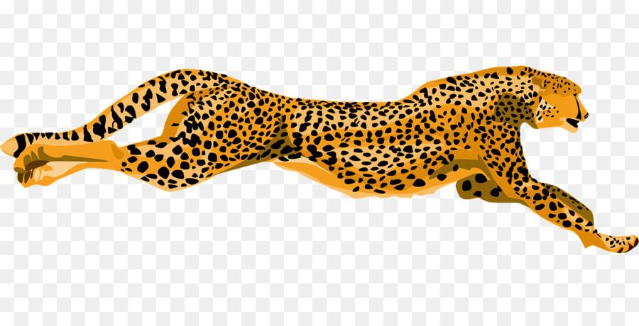 Cheetah clipart angry. Leopard jaguar clip art