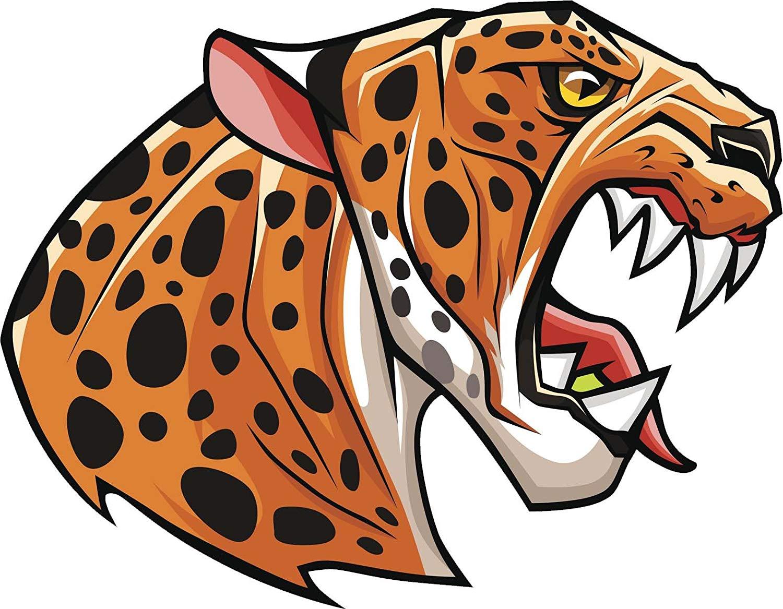 Cheetah clipart angry. Amazon com aggressive wild