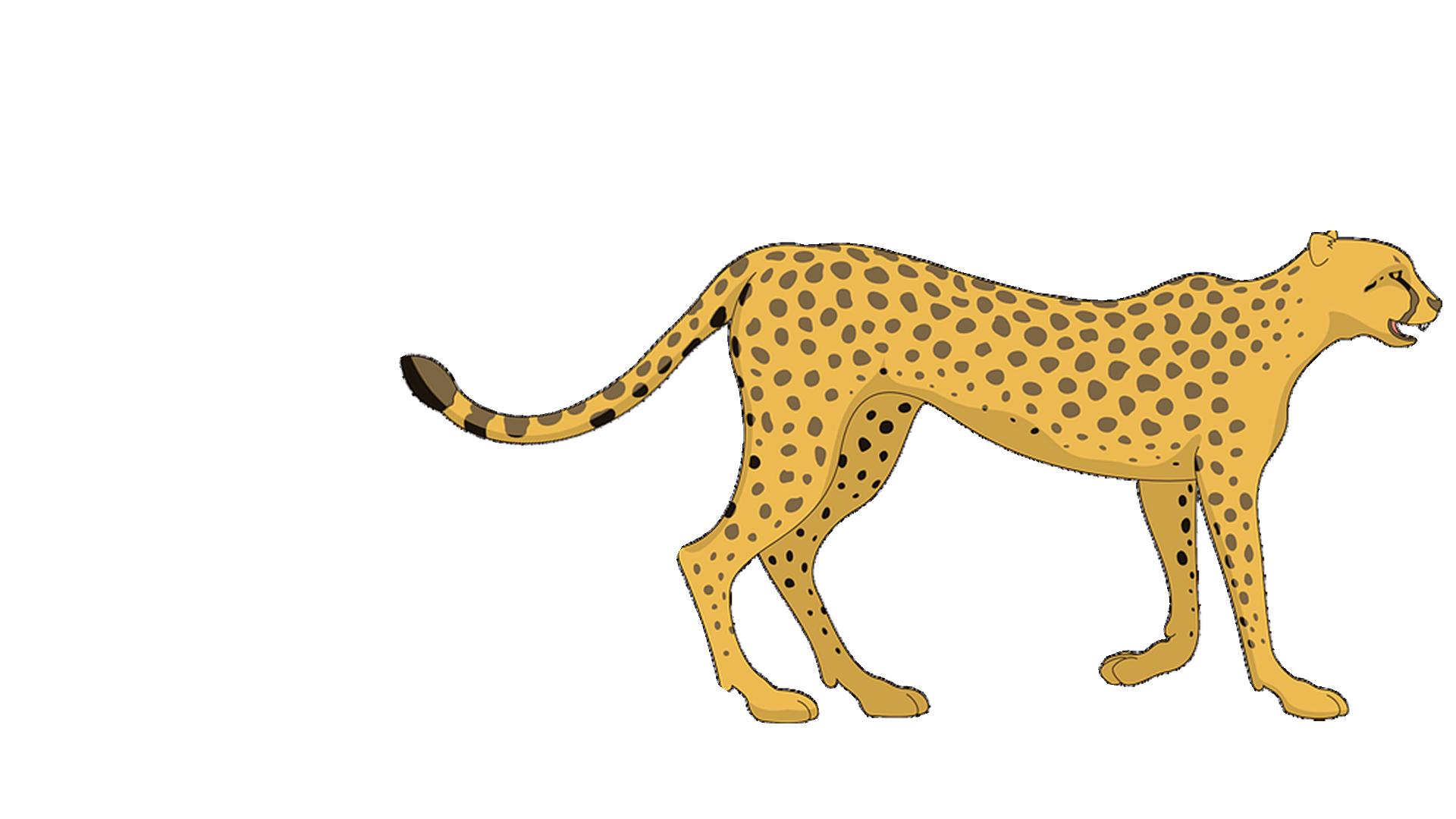 Animated Cheetah Wallpaper cheetah clipart big cat, cheetah big cat transparent free