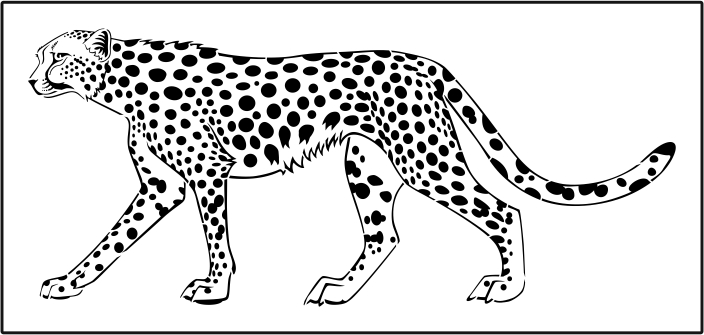 collection of drawing. Cheetah clipart body